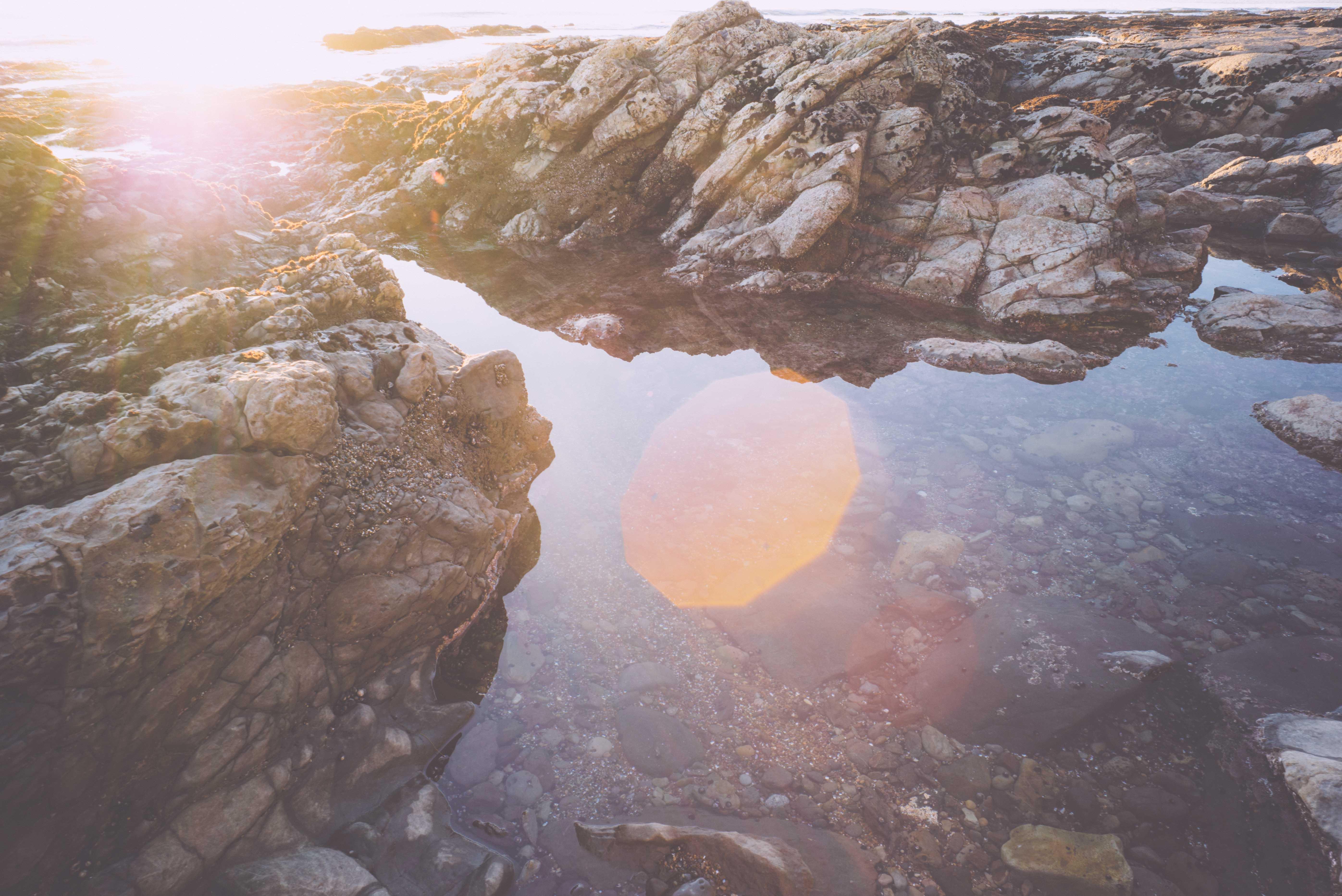 shell_beach-1