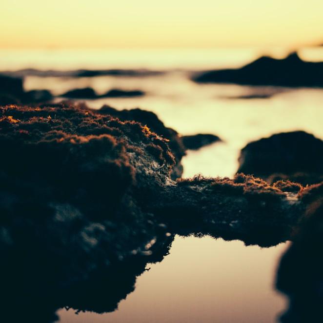 shell_beach-18