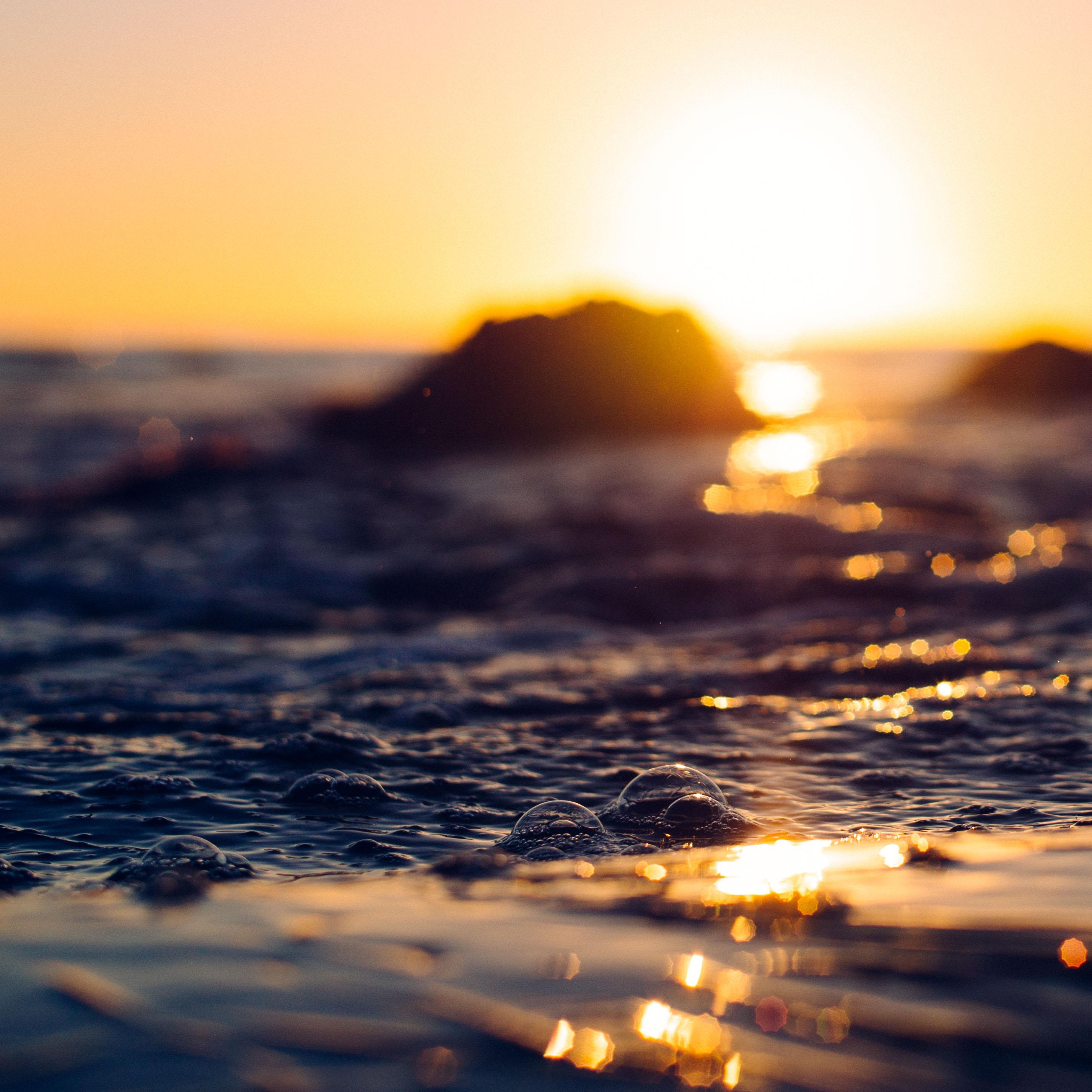 shell_beach-3