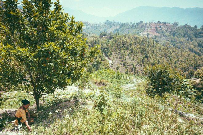 Nepal_DhadingTrip-38