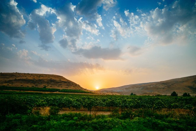 Nablus-44