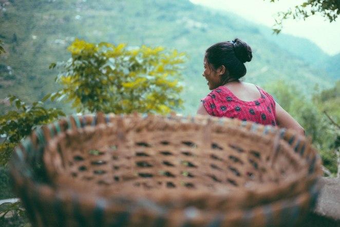 nepal_201508-11