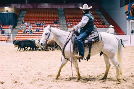 Rodeo-61