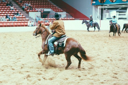 Rodeo-79