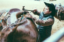 Rodeo-83