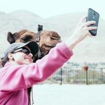 camel-13